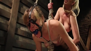 Cherry Torn together with very small tits Mona Wales