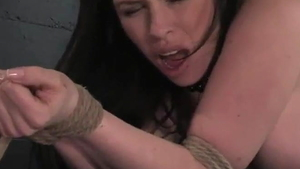 Fake tits whore Daphne Rosen brutal doggystyle HD