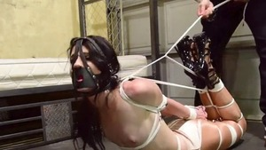 Domination bondage in company with tight brunette